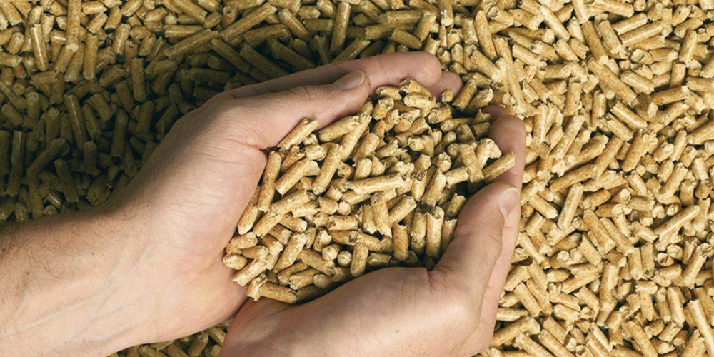 Solutions d'économie d'énergie : utiliser le bois comme combustible